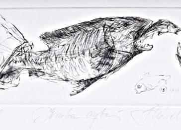 Skórczewski Krzysztof, Gruba Ryba, Miedzioryt NaPapierze, 7,2 X 15,2, 2011